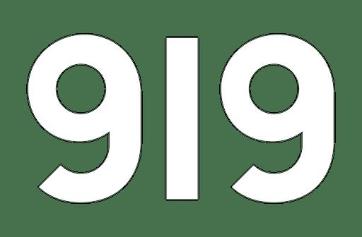 919_logo_w